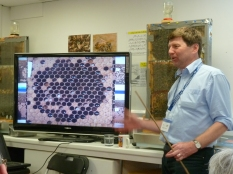 Norman Carreck NDB discusses the scientific method for testing for hygenic bees