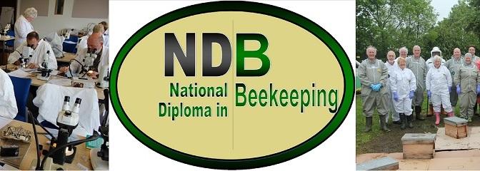 NDB Students